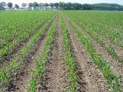 Financiering landbouwgrond