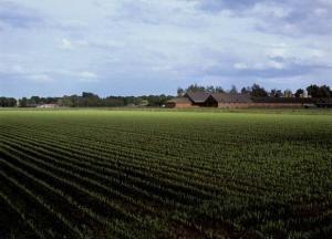 landbouw fiscaliteiten